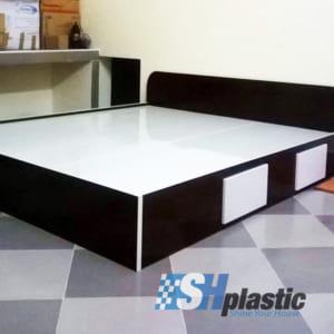 Mẫu giường ngủ nhựa đôi Người lớn cao cấp / SHplastic GN11