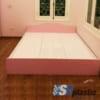 Mẫu giường ngủ nhựa đôi Người lớn cao cấp / SHplastic GN10
